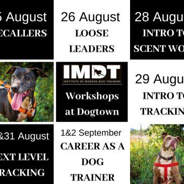 Steve Mann Training Workshops